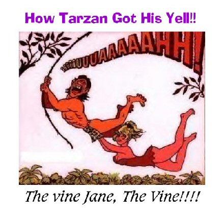 Tarzanin huudon salaisuus